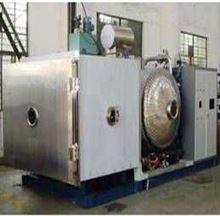 GLZY-13B真空冷冻干燥机