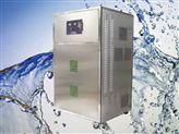 200克臭氧发生器,大型臭氧发生器,中型臭氧发生器