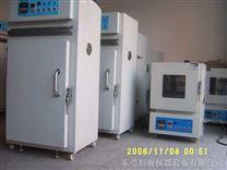 電熱恒溫烘箱/恒溫烤箱