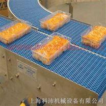 食品輸送帶/輸送機/傳送帶/皮帶