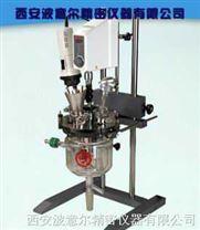 西安波意尔均质乳化夹层玻璃反应釜