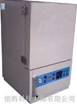 充氮真空烘箱 無氧烘箱 充氮烘箱
