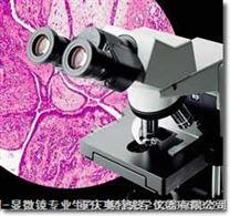 CX31系列教學級生物顯微鏡