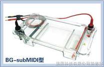 BG-subMIDI多用途水平电泳仪