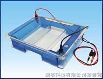 BG-subMAX 宽式水平电泳仪