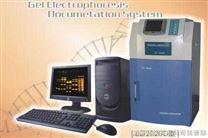 LG2020D凝胶成像系统