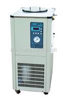DLSB-10/30热卖产品供应低温冷却液循环泵