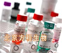 北京方程现货 Yeast Extrant 酵母粉(酵母提取物)BBL 分装 规格:500g