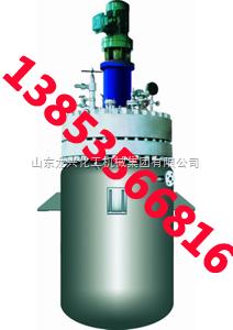 供应高压反应釜|高温高压反应釜|高压反应釜价格
