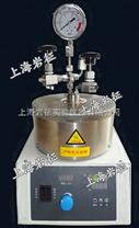 10-500ML微型反應釜