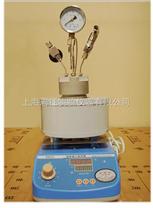 500ML微型反应釜