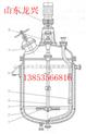 化工反應釜,配套磁力驅動攪拌器