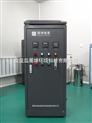 5g小型臭氧发生器\内置氧气源臭氧发生器