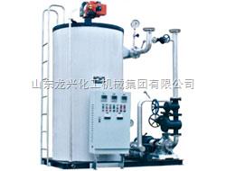 山东龙兴       燃油立筒导热油炉