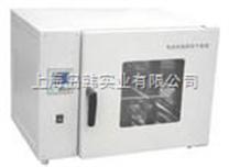 臺式電熱恒溫鼓風干燥箱(液晶屏) 恒溫烘箱
