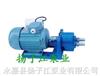 S微型齒輪輸油泵