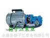 WCB手提式不銹鋼齒輪油泵